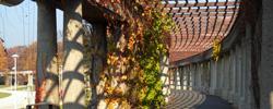 zdjęcia jesieni na Wielkiej Wyspie