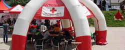 dawcy krwi teki Wittiga