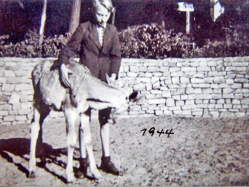Archiwalne zdjęcie pracownika ZOO