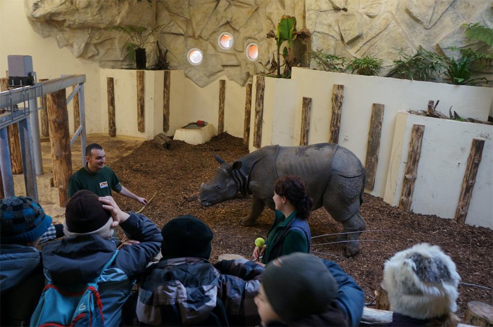 zoo opiekun opowiada